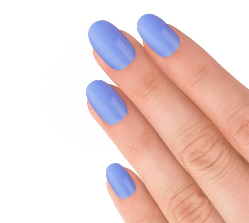 Express Cornflower Blue-2788